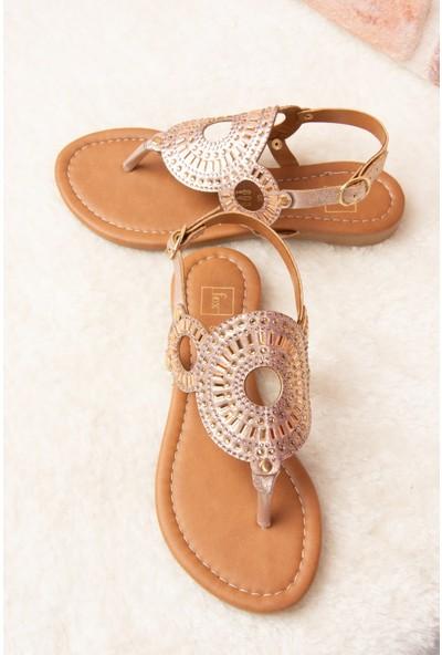 Fox Shoes Bronz Kadın Sandalet H713011214
