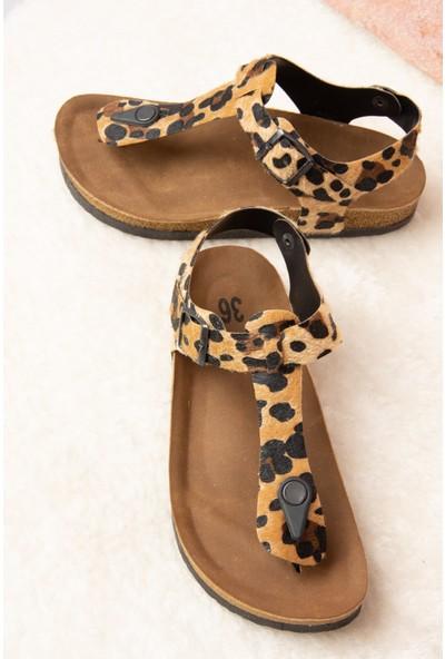 Fox Shoes Leopar Kadın Sandalet B777805002