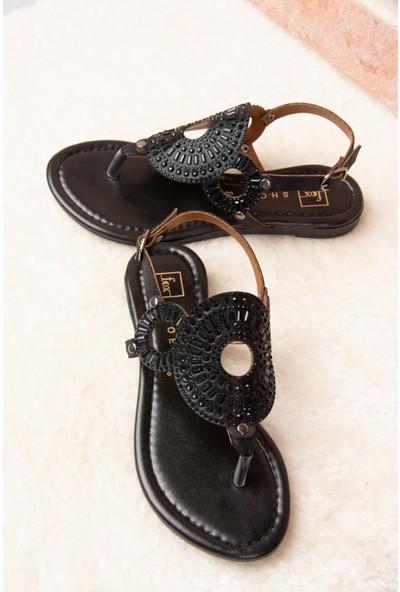 Fox Shoes Siyah Kadın Sandalet H713011214
