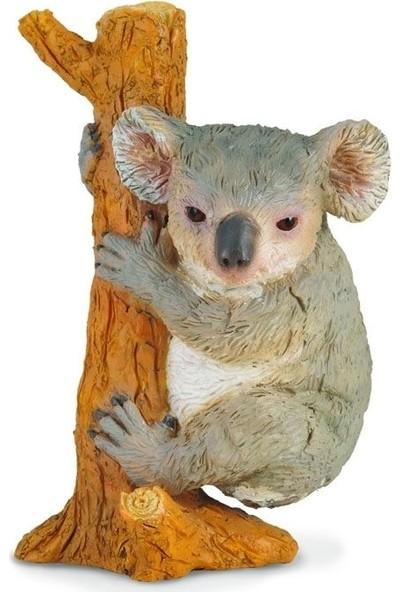 Collecta Tırmanan Koala