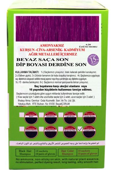 Go Perfect Renklendirici Saç Şampuanı 6.20 Üzüm Moru 10X30 300 ml