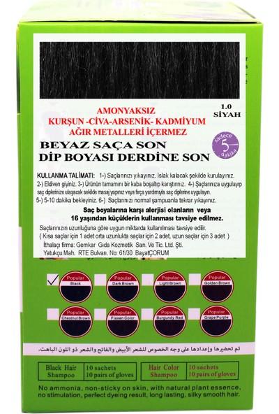 Go Perfect Renklendirici Saç Şampuanı 1.0 Siyah 10X30 300 ml