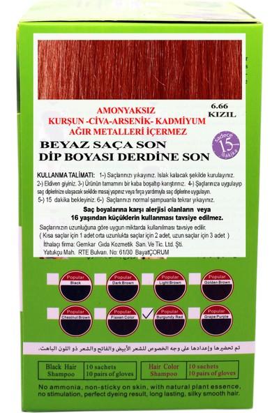 Go Perfect Renklendirici Saç Şampuanı 6.66 Bordo Kızıl 10X30 300 ml