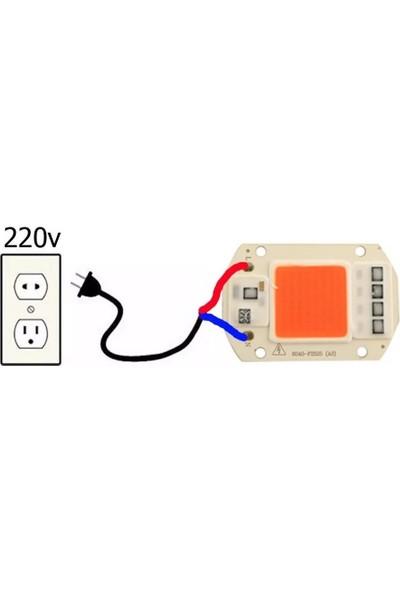 Motorobit Kırmızı Projektör Cob LED Driver Çipli 220 V 50 W