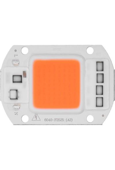 Motorobit Amber Kehribar Projektör Cob LED Driver Çipli 220 V 50 W