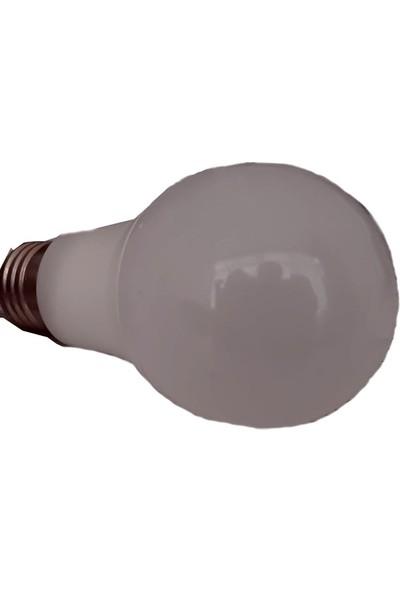 Greenlight LED Enerji Tasarufflu Ampul 10 W 2'li