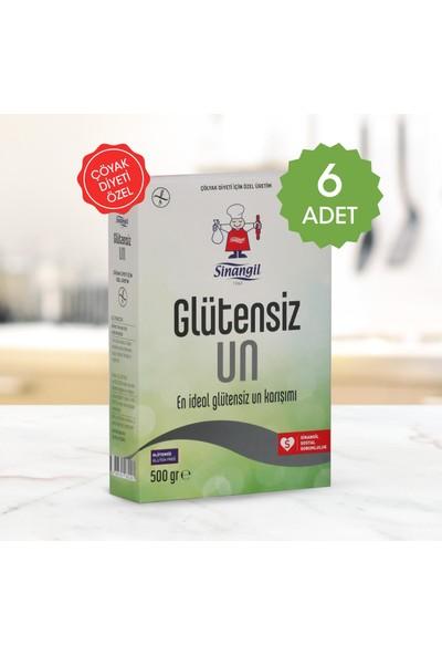 Sinangil Glutensiz Un 500 gr 6'lı