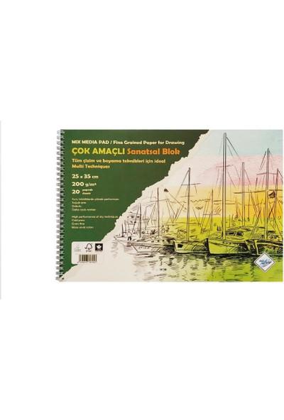 Art Liva Sanatsal Resim Defteri Multi Teknik 20 Sayfa 120 gr 25 x 35 cm