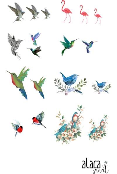 Alaca Sanat Epoksi Reçine Kuş Figürü Şeffaf Sticker