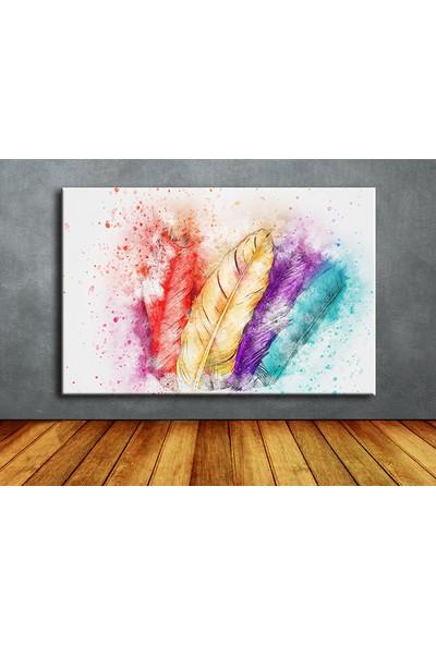 Dekoyes Suluboya Renkli Tüyler Kanvas Tablo 30 x 20 cm