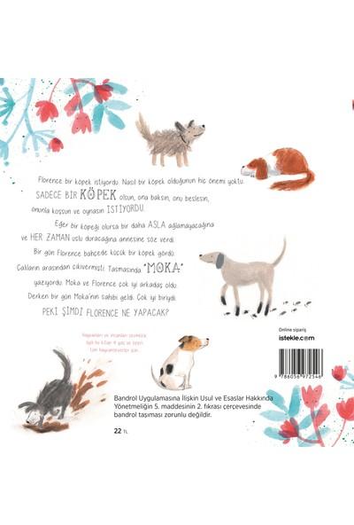 Bir Köpek Hayal Etmek - An Swerts