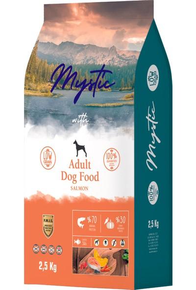 Mystic Somonlu Yetişkin Köpek Maması 2,5 kg