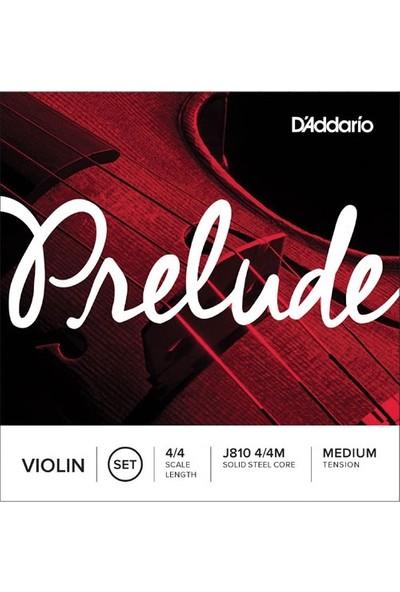 D'Addario J810 4/4M Prelude Keman Teli