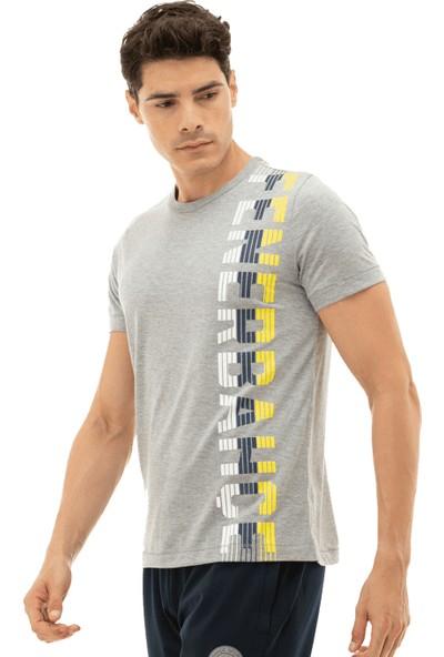 Fenerium Erkek Kolej Çizgili FB T-Shirt