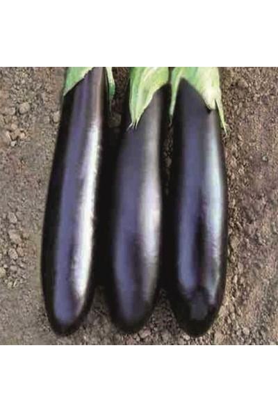 Mutlu Paket Aydın Siyahı Patlıcan Tohumu 10 gr
