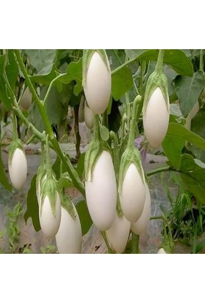 Mutlu Paket Casper Beyaz Patlıcan Tohumu 10'lu