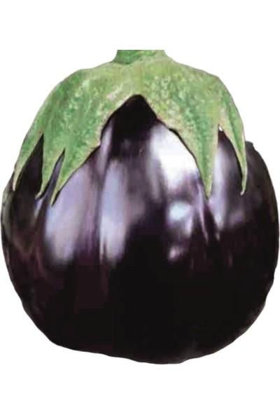 Mutlu Paket Dilimli Topan Patlıcan Tohumu 10 gr