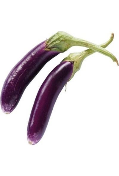 Mutlu Paket Long Purple Patlıcan Tohumu 40'lı
