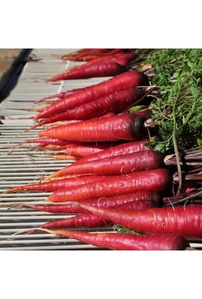 Mutlu Paket Şalgamlık Cosmic Purple Havuç Tohumu 35'li