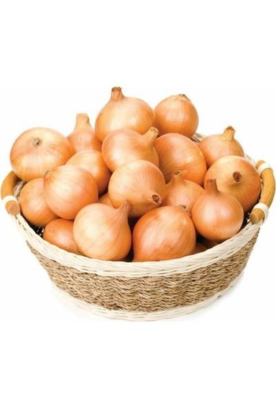 Mutlu Paket Yemeklik Bankon Soğan Tohumu 2 gr