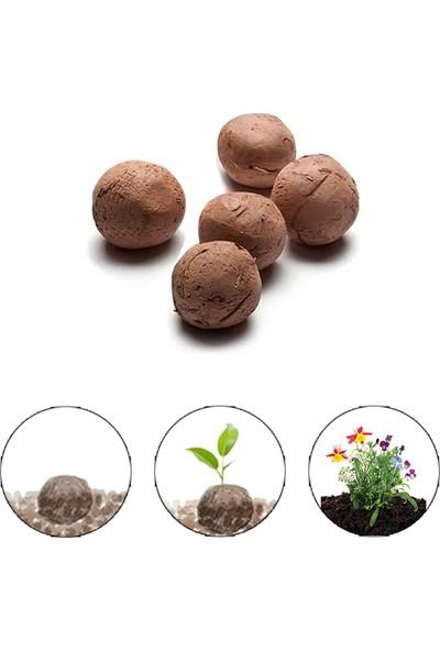 Fideland Karışık Çiçek Tohum Topları 5'li