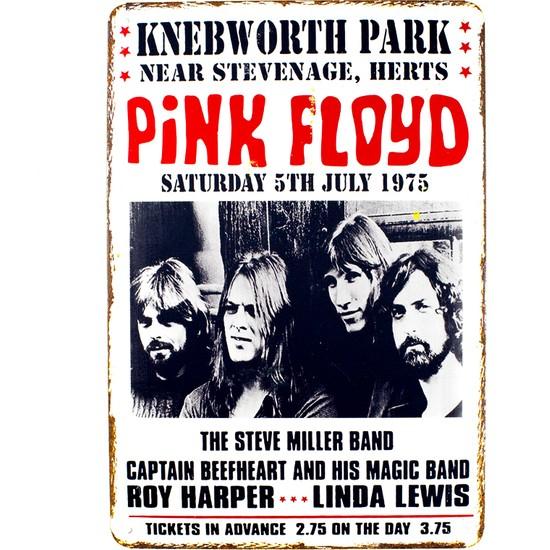 Carma Concept Pink Floyd Knebworth Park Metal Duvar Konser Posterleri Retro Müzik Panoları