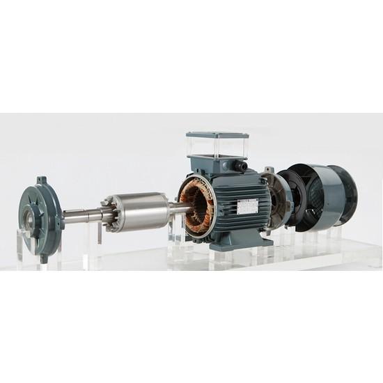 Gamak Elektirik Motoru 1.5 Kw 2 Hp