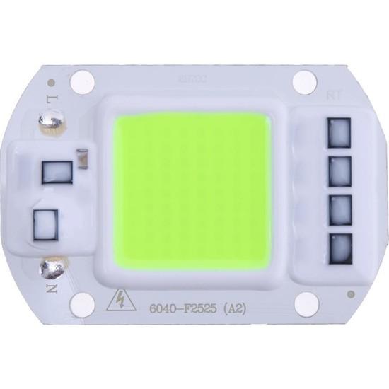 Motorobit Yeşil Projektör Cob LED Driver Çipli 220 V 50 W