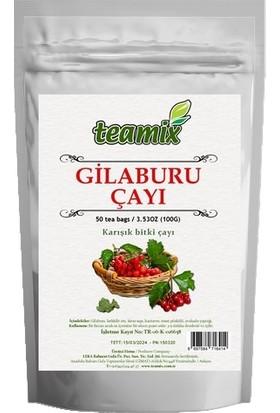 Teamix Gilaburu Çayı