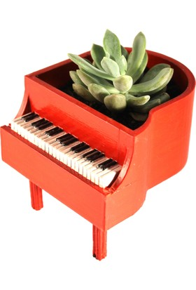 Propixel Piyano Kaktüs Sukulent Saksı