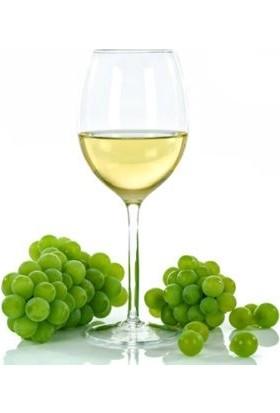 Hoja white Wıne Beyaz Şarap SİRKESİ 750 ml