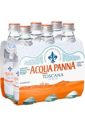 Acqua Panna Mineralli Kaynak Suyu 250 ml x 6