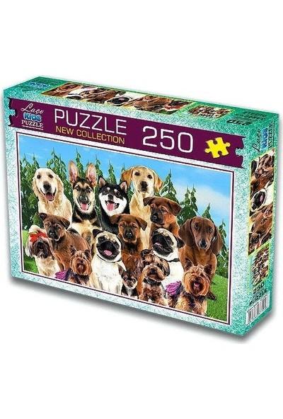 Laço Sevimli Köpekler 250 Parça Puzzle