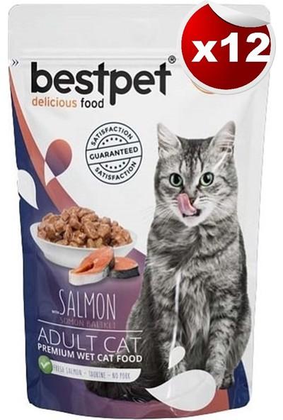 Bestpet Adult Jelly Pouch Somonlu Kedi Maması 85 gr 12'li