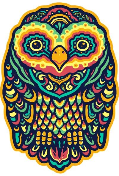 Sticker Fabrikası Baykuş Sticker 9 x 6 cm Renkli