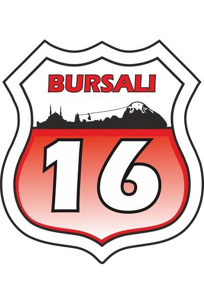 Sticker Fabrikası Bursalı Sticker 12 x 13 cm Renkli