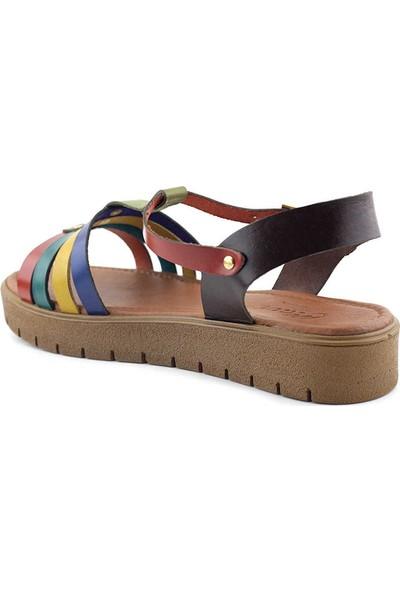 Clavi VRL307 Kadın Sandalet Multi