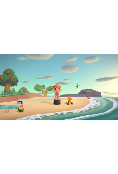 Animal Crossing : New Horizons Switch Oyun
