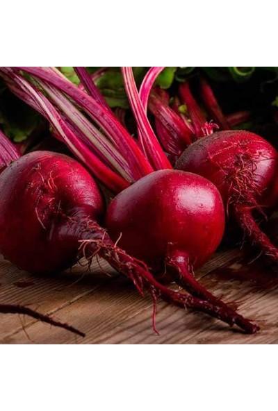 Baktar Doğal Kırmızı Pancar Tohumu 10 gr