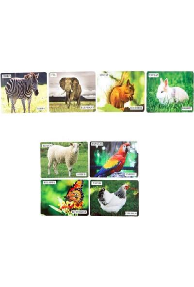 Mofy Baby Eğitici İngilizce Destekli İlk 50 Hayvanlar Flash Kartları