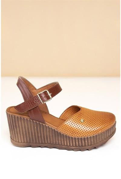 Pierre Cardin Kadın Günlük Ayakkabı-Taba