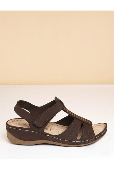 Pierre Cardin Kadın Sandalet-Kahve