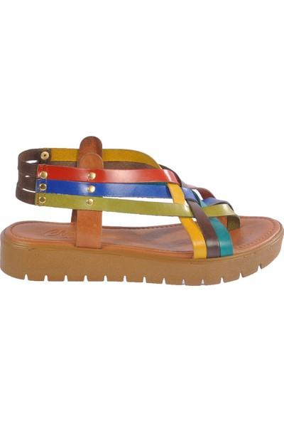 Clavi 305 Multi Kadın Sandalet