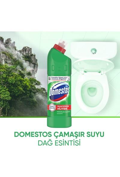 Domestos Extra Güçlü Dağ Esintisi Hijyen Temizleyici 750 ml