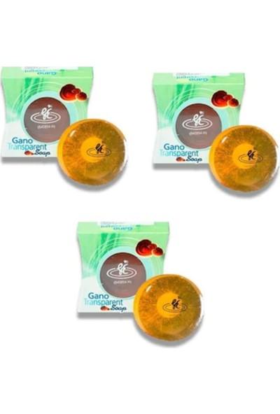 Gano Excel Gano Transparent Soap, Şeffaf Sabun (3 SABUN*100 Gr) (3 Kutu)