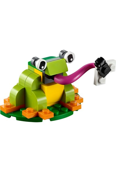 LEGO 40326 Mini Kurbağa Polybag