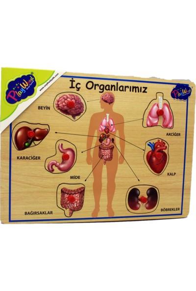 Playwood Ahşap Tutmalı Puzzle İç Organlarımız