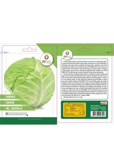 Birtaş Sarmalık Beyaz Lahana Tohumu Paket