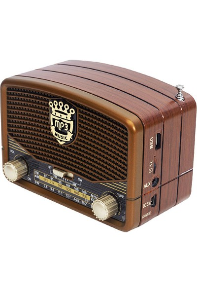 Everton RT-307 Alarm Saatli Radyo