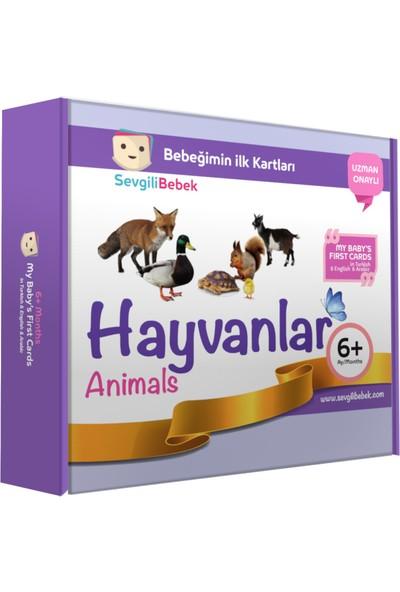 SevgiliBebek Bebeğimin İlk Zeka Kartları - Hayvanlar